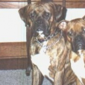 Rudy's parents- Bubba & Lucy